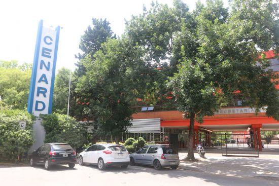 Cenard, de ícono del deporte argentino a negocio inmobiliario